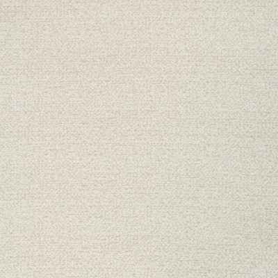 B8481 Eggshell Fabric: S37, E57, E14, ANNA ELISABETH, CRYPTON, CRYPTON HOME, PERFORMANCE, EASY TO CLEAN, ANTIMICROBIAL, STAIN RESISTANT, NFPA260, NFPA 260, EGGSHELL, TEXTURE, SOLID, CREAM, CREAM TEXTURE, CRYPTON PERFORMANCE, KID FRIENDLY FABRIC, PET FRIENDLY FABRIC, NEUTRAL TEXTURE, SLUBBY TEXTURE, OFF WHITE