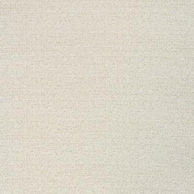B8481 Eggshell Fabric: E57, E14, CRYPTON HOME, CRYPTON FINISH, PERFORMANCE, CRYPTON PERFORMANCE, ANTI-MICROBIAL, EASY TO CLEAN, KID FRIENDLY FABRIC, PET FRIENDLY FABRIC, NEUTRAL TEXTURE, SLUBBY TEXTURE, OFF WHITE, CHUNKY TEXTURE