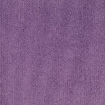 B8605 Plum Fabric: E15, CRYPTON HOME, CRYPTON FINISH, CRYPTON PERFORMANCE FABRIC, PERFORMANCE FABRIC, ANTI-MICROBIAL, EASY TO CLEAN FABRIC, PET FRIENDLY FABRIC, KID FRIENDLY FABRIC, GREENGUARD CERTIFIED
