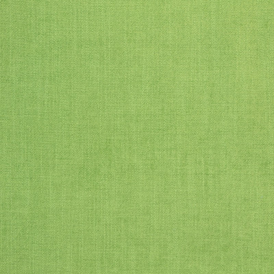B8644 Greenery Fabric: E16, CRYPTON HOME, PERFORMANCE CRYPTON, CRYPTON PERFORMANCE, EASY TO CLEAN FABRIC, PET FRIENDLY FABRIC, KID FRIENDLY FABRIC, PERFORMANCE FABRIC, GREENGUARD CERTIFIED