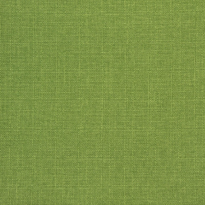 B8645 Wasabi Fabric: E16, CRYPTON HOME, PERFORMANCE CRYPTON, CRYPTON PERFORMANCE, EASY TO CLEAN FABRIC, PET FRIENDLY FABRIC, KID FRIENDLY FABRIC, PERFORMANCE FABRIC, GREENGUARD CERTIFIED