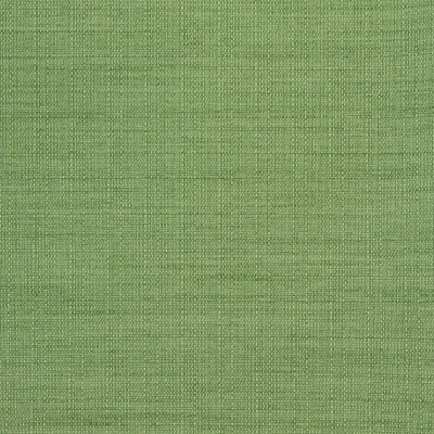 B8646 Clover Fabric: E16, CRYPTON HOME, PERFORMANCE CRYPTON, CRYPTON PERFORMANCE, EASY TO CLEAN FABRIC, PET FRIENDLY FABRIC, KID FRIENDLY FABRIC, PERFORMANCE FABRIC, GREENGUARD CERTIFIED