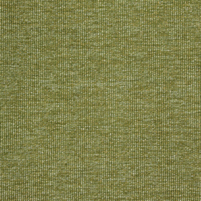 B8649 Avocado Fabric: E16, CRYPTON HOME, PERFORMANCE CRYPTON, CRYPTON PERFORMANCE, EASY TO CLEAN FABRIC, PET FRIENDLY FABRIC, KID FRIENDLY FABRIC, PERFORMANCE FABRIC, GREENGUARD CERTIFIED