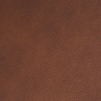 B8698 Brick Fabric: L12, REDDISH BROWN LEATHER HIDE, RED LEATHER HIDE, BROWN LEATHER HIDE, RED TONED HIDE, RED LEATHER