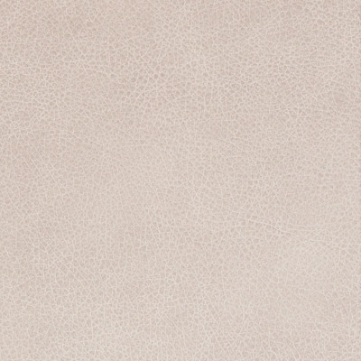 B8732 Fog Fabric: L12, LIGHT GREY LEATHER, LIGHT GRAY LEATHER, GRAY LEATHER, GREY LEATHER HIDE, SMOKE, FOG, STONE