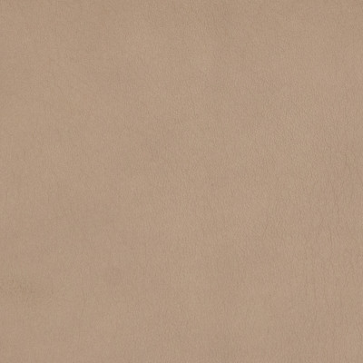B8733 Taupe Fabric: L12, TAUPE LEATHER HIDE, KHAKI LEATHER HIDE, DARK TAUPE, BEIGE LEATHER