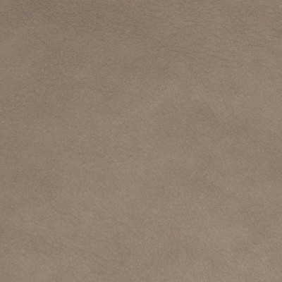 B8735 Granite Fabric: L12, GRAY LEATHER HIDE, GREY LEATHER HIDE, SMOKY GRAY LEATHER, STONE, GRANITE