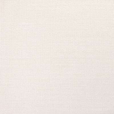 B8823 Swan Fabric: E18, OUTDOOR FABRIC, INDOOR/OUTDOOR FABRIC, OUTDOOR PERFORMANCE FABRIC, BLEACH CLEANABLE, UV RESISTANT, ANTIMICROBIAL, STAIN RESISTANT