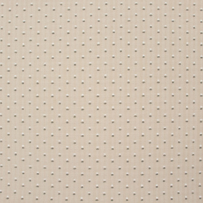 B8850 Linen Fabric: E18, OUTDOOR FABRIC, INDOOR/OUTDOOR FABRIC, OUTDOOR PERFORMANCE FABRIC, BLEACH CLEANABLE, UV RESISTANT, ANTIMICROBIAL, STAIN RESISTANT