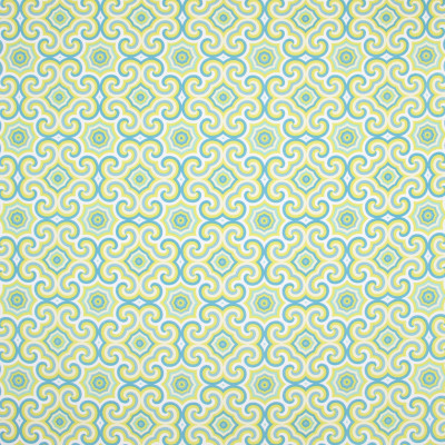 B8873 Limelight Fabric: E19, STAIN RESISTANT, OUTDOOR FABRIC, INDOOR / OUTDOOR FABRIC, FAMILY FRIENDLY FABRIC, FADE RESISTANT UP TO 500 HOURS OF DIRECT SUN EXPOSURE