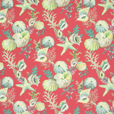 B8894 Mai Tai Fabric: E19, STAIN RESISTANT, OUTDOOR FABRIC, INDOOR / OUTDOOR FABRIC, FAMILY FRIENDLY FABRIC, FADE RESISTANT UP TO 500 HOURS OF DIRECT SUN EXPOSURE, SHELL, SHELLS, SEASHELLS
