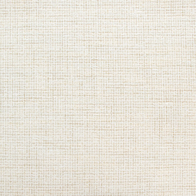 B9128 Snowy Fabric: E24, OFF WHITE TEXTURE, NEUTRAL TEXTURE, IVORY TEXTURE, CHUNKY TEXTURE