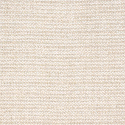 B9133 Oyster Fabric: E42, E24, NEUTRAL TEXTURE, LIGHT KHAKI TEXTURE, WOVEN TEXTURE, SOLID TEXTURE, LIGHT SAND TEXTURE