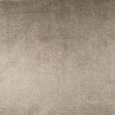 B9157 Champagne Fabric: E24, ANIMAL SKIN, SKIN VELVET, VELVET SKIN