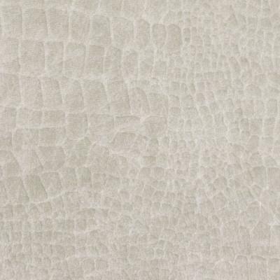B9170 Coconut Fabric: E25, ANIMAL SKIN VELVET, SOLID SKIN VELVET, TEXTURE VELVET, SKINNED VELVET