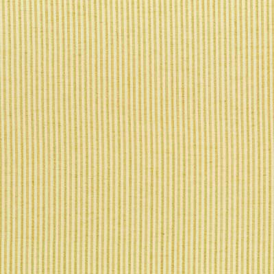 B9570 Golden Fabric: E34, PINSTRIPE, CHAMPAGNE PINSTRIPE, THIN STRIPE, MINI STRIPE, NEUTRAL STRIPE, SATIN STRIPE, GOLD STRIPE, GOLDEN STRIPE
