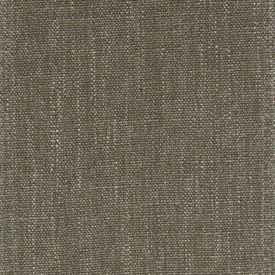 F1021 Lentil Fabric: E42, LIGHT BROWN, SOLID BROWN, WOVEN BROWN, TEXTURE