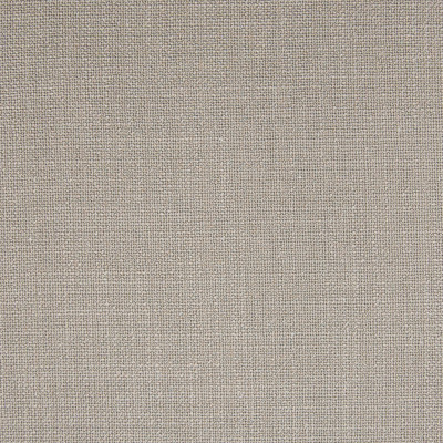 F1031 Dove Fabric: E42, LIGHT GRAY TEXTURE, LIGHT GREY TEXTURE, WOVEN TEXTURE, SILVER TEXTURE, SOLID GRAY TEXTURE, SOLID GREY TEXTURE, GREIGE, GRAY BEIGE