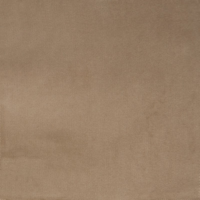 F1153 Taupe Fabric: E50, NEUTRAL VELVET, SOLID VELVET, PLUSH VELVET, TEXTURED VELVET