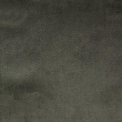 F1158 Graphite Fabric: E50, GRAY VELVET, GREY VELVET, SOLID VELVET, SOLID GRAY VELVET, SOLID GREY VELVET, WOVEN VELVET