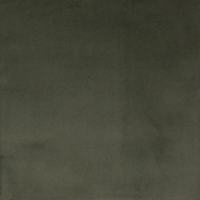 F1163 Olive Fabric: E50, OLIVE VELVET, OLIVE, GREEN VELVET, TEXTURED VELVET