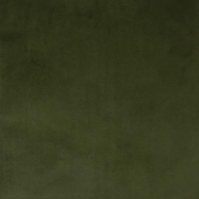 F1164 Basil Fabric: E50, GREEN VELVET, SOFT VELVET, TEXTURED VELVET, WOVEN VELVET