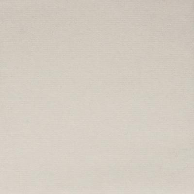 F1180 Snow Fabric: E44, VELVET, SOLID VELVET, PLUSH VELVET, LUSH VELVET, SILKY VELVET, POLYSTER VELVET