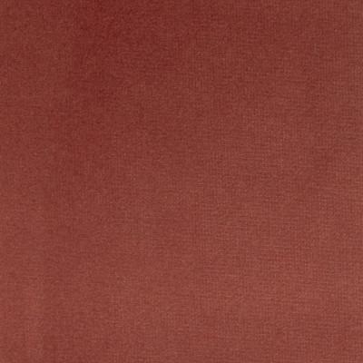 F1186 Terra Rose Fabric: E44, VELVET, SOLID VELVET, PLUSH VELVET, LUSH VELVET, SILKY VELVET, POLYESTER VELVET