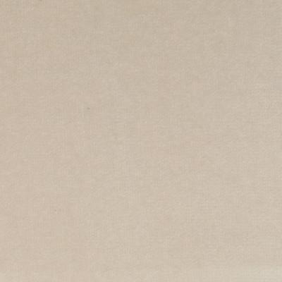 F1202 Pearl Fabric: E44, VELVET, SOLID VELVET, PLUSH VELVET, LUSH VELVET, SILKY VELVET, POLYESTER VELVET