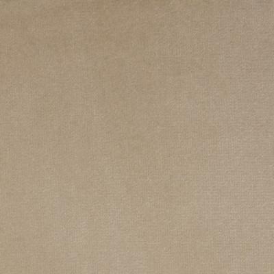 F1204 Pebble Fabric: E44, VELVET, SOLID VELVET, PLUSH VELVET, LUSH VELVET, SILKY VELVET, POLYESTER VELVET