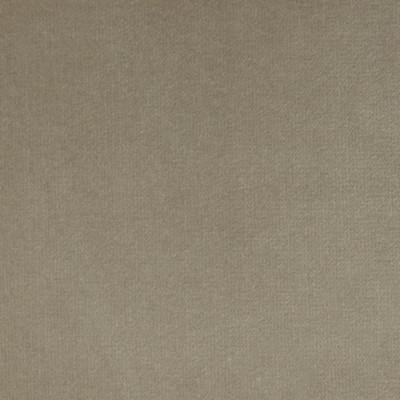 F1205 Vapor Fabric: E44, VELVET, SOLID VELVET, PLUSH VELVET, LUSH VELVET, SILKY VELVET, POLYSTER VELVET