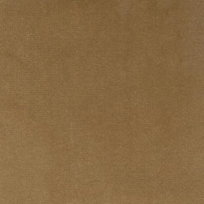F1207 Camel Fabric: E44, VELVET, SOLID VELVET, PLUSH VELVET, LUSH VELVET, SILKY VELVET, POLYSTER VELVET