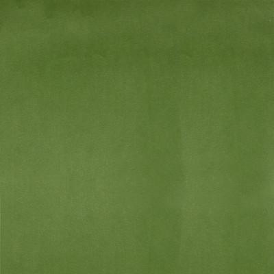 F1221 Parrot Fabric: E52, GREEN VELVET, SOLID GREEN VELVET, WOVEN VELVET, PLUSH VELVET