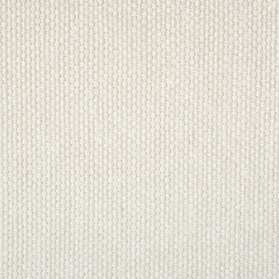F1356 Salt Fabric: E56, WHITE, TEXTURE, WOVEN, PLAIN, SOLID, SALT, MADE IN USA, PERFORMANCE, REVOLUTION