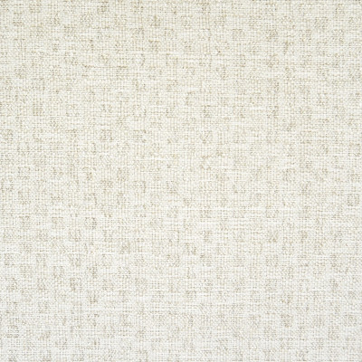 F1369 Salt Fabric: E56, NEUTRAL, SOFT, CREAM, IVORY, WOVEN TEXTURE, TEXTURE, WOVEN, KNIT, WHITE KNIT, SHIMMER, LUSTER, IVORY LUSTER, IVORY SHIMMER, SHINE,