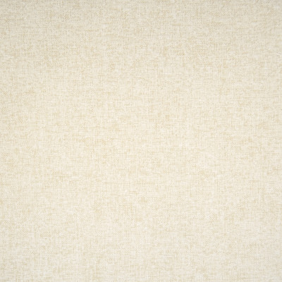 F1419 Snow Fabric: E57, NEUTRAL CHENILLE, CHENILLE TEXTURE, NEUTRAL, TEXTURE, CHENILLE