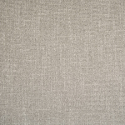 F1436 Pewter Fabric: E57, CRYPTON HOME, CRYPTON FINISH, PERFORMANCE, CRYPTON PERFORMANCE, ANTI-MICROBIAL, EASY TO CLEAN, KID FRIENDLY FABRIC, PET FRIENDLY FABRIC, SOLID, TEXTURE, NEUTRAL, PLAIN, NEUTRAL SOLID, NUETRAL TEXTURE, BEIGE, SOLID BEIGE, BEIGE SOLID