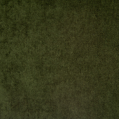 F1487 Moss Fabric: E58, CRYPTON HOME, CRYPTON FINISH, PERFORMANCE FABRIC, PERFORMANCE FABRICS, STAIN RESISTANT, EASY TO CLEAN, SOLID, GREEN, CHUNKY WOVEN, CHUNKY, DARK GREEN
