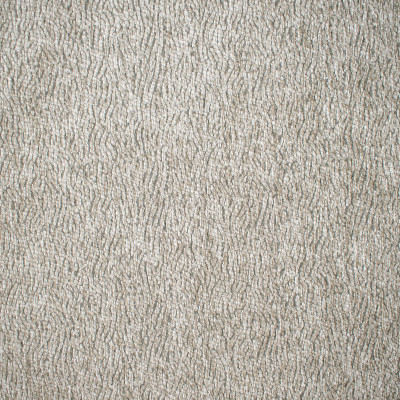 F1566 Fog Fabric: E60, CHENILLE NEUTRAL, NEUTRAL CHENILLE, GRAY AND NEUTRAL CHENILLE, SQUIGGLY LINES, CURVED LINES, GRAY, GREY