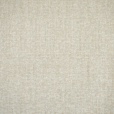 F1624 Linen Fabric: E68, E61, CHUNKY TEXTURE, NEUTRAL CHUNKY TEXTURE, NEUTRAL CHUNKY, NEUTRAL SOLID, NEUTRAL CHUNKY SOLID, CHUNKY NEUTRAL SOLID