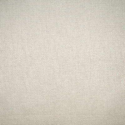 F1643 Linen Fabric: E61, NEUTRAL SOLID, SOLID NEUTRAL, PLAIN SOLID, NEUTRAL PLAIN SOLID, PLAIN NEUTRAL SOLID, CHUNKY SOLID, CHUNKY WOVEN, CHUNKY SOLID WOVEN, CHUNKY PLAIN SOLID