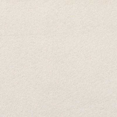 F1786 Linen Fabric: E64, NEUTRAL VELVET, BEIGE VELVET, NEUTRAL SOLID, BEIGE SOLID, SOLID BEIGE VELVET