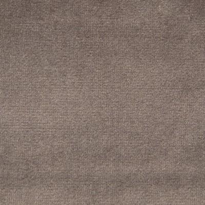 F1795 Otter Fabric: E64, SOLID GRAY, GRAY VELVET, SOLID GRAY VELVET