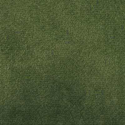 F1838 Parrot Fabric: E64, SOLID GREEN, GREEN VELVET, SOLID GREEN VELVET