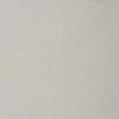 F1853 Cloud Fabric: E65, VINYL,WHITE, SNOW, BLANCA, FAUX LEAHTER,