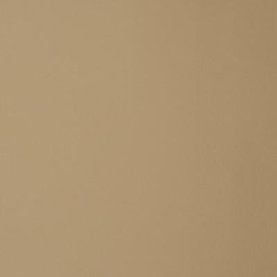 F1857 Parchment Fabric: E65, VINYL,PARCHMENT, BEIGE, SAND, NATURAL, NEUTRAL, FAUX LEATHER