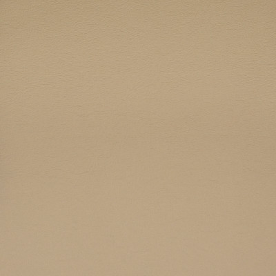 F1861 Taupe Fabric: E65, VINYL,TAUPE,LATTE, STONE,MOCHA,STUCCO, NEUTRAL, SOLID, FAUX LEATHER