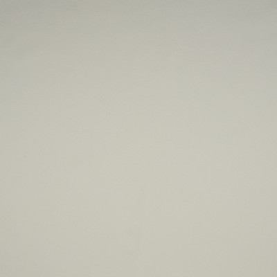 F1904 Ivory Fabric: E66, MATTE, SOLID, IVORY, CREAM, SOLID IVORY, CREAM SOLID, PLAIN