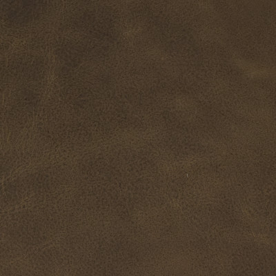 F2046 Cocoa Fabric: L14, L13, LEATHER, LEATHER HIDE, HIDE, FULL HIDE, NATURAL HIDE, NATURAL LEATHER, COW HIDE, BOVINE, UPHOLSTERY LEATHER, UPHOLSTERY HIDE, LIGHT GREY LEATHER, LIGHT GREY, LIGHT GRAY LEATHER, LIGHT GRAY, TAUPE, PERFORMANCE, PERFORMANCE LEATHER, ITALY, ITALIAN LEATHER