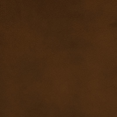 F2054 Umber Fabric: L14, L13, LEATHER, LEATHER HIDE, HIDE, FULL HIDE, NATURAL HIDE, NATURAL LEATHER, COW HIDE, BOVINE, UPHOLSTERY LEATHER, UPHOLSTERY HIDE, PERFORMANCE, PERFORMANCE LEATHER, ITALY, ITALIAN LEATHER